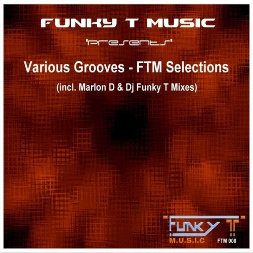 DJ Funky T - Various Grooves FTM Selections (2015)