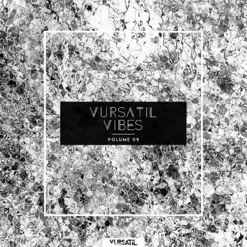 VA - Vursatil Vibes 09 (2015)