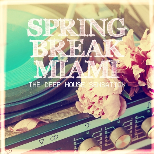 VA - Spring Break Miami - The Deep House Sensation (2015)