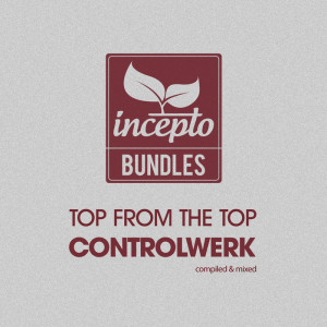 VA-Top From The Top Controlwerk (2015)