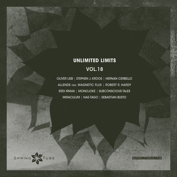 VA - Unlimited Limits Vol.18 (2015)
