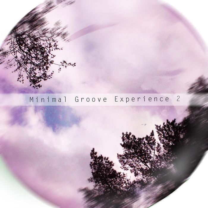 VA - Minimal Groove Experience 2 (2015)