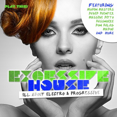VA - Excessive House All About Electro & Progressive (2015)