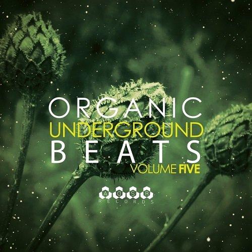 VA - Organic Underground Beats Vol.5 (2015)