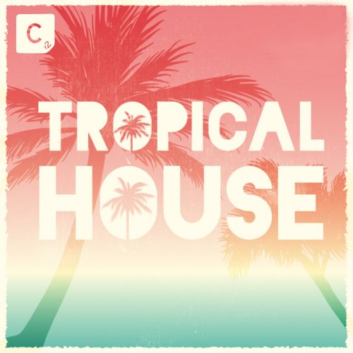 VA - Tropical House (2015