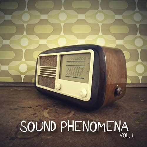 VA - Sound Phenomena Vol 1 (2015)