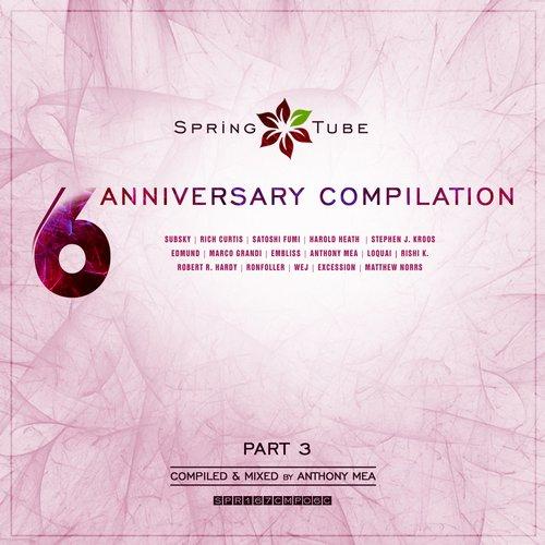 VA - Spring Tube 6th Anniversary Compilation. Part 3 (2015)
