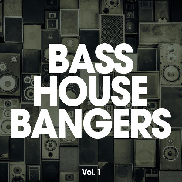 VA - Bass House Bangers, Vol. 1 (2015)