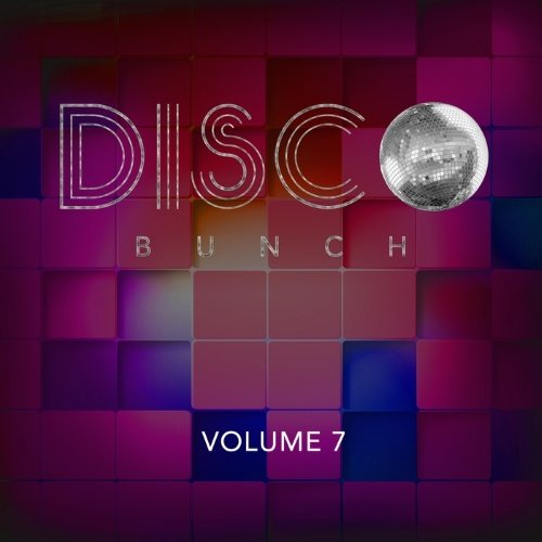 VA - Disco Bunch, Vol. 7 (2015)