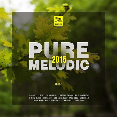 VA - Pure Melodic 2015 Vol 1 (2015)