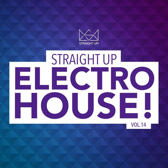 VA - Straight Up Electro House Vol 14 (2015)