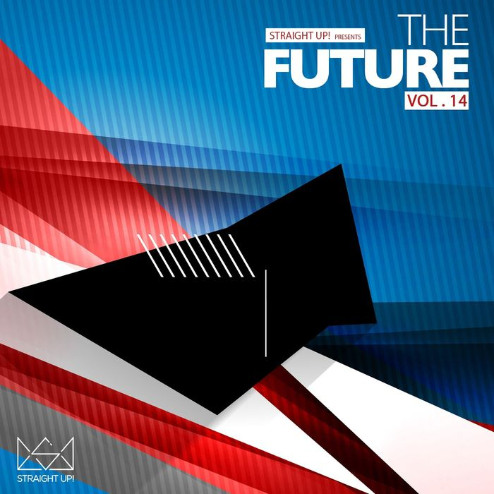 VA - Straight Up Presents The Future Vol 14 (2015)