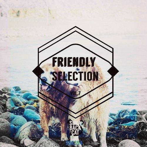VA - Friendly Selection Vol 7 (2016)