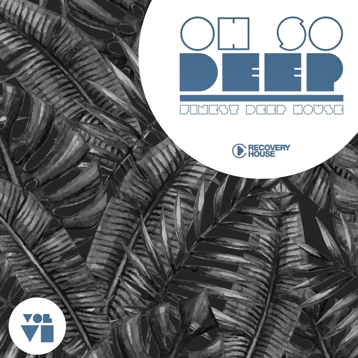 Va oh so deep finest deep house vol 6 2016 for Best deep house tracks of all time