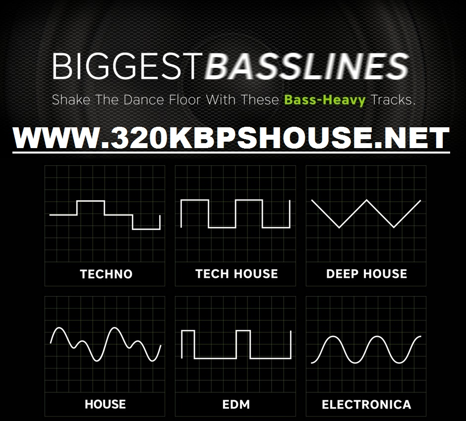 Beatport Biggest Basslines Tracks 2016