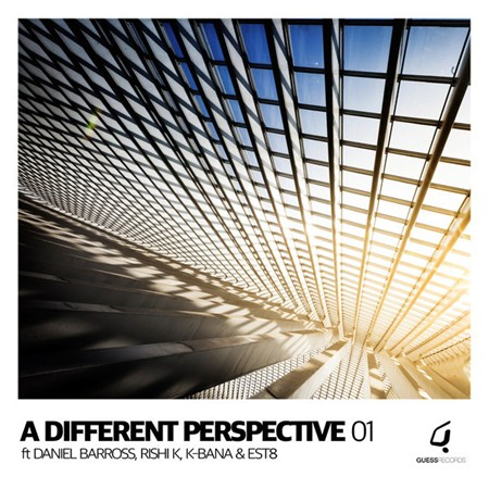 VA - A Different Perspective 01 - [Guess Records]