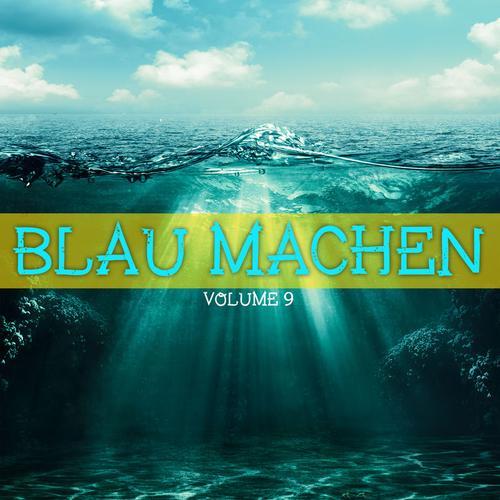 VA - Blau Machen Vol 9 (2016)