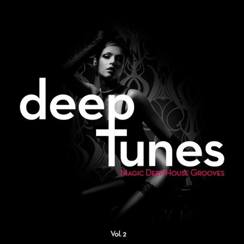 VA - Deep Tunes Magic Deep House Grooves Vol.2 (2016).