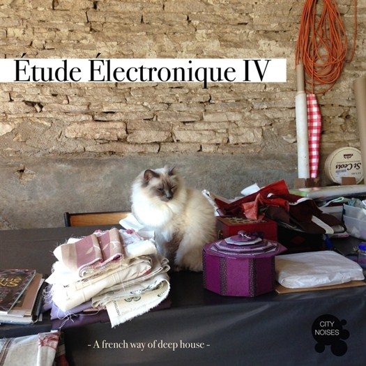 VA - Etude Electronique Iv - A French Way Of Deep House (2016)