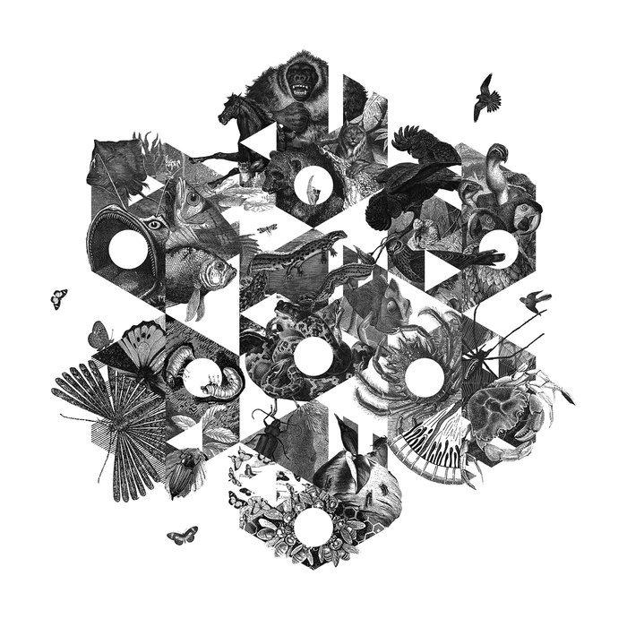 VA - Kaleido Various Artists, Vol. 2 (2016)