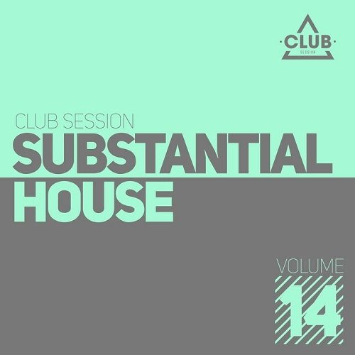 VA - Substantial House Vol 14 (2016)
