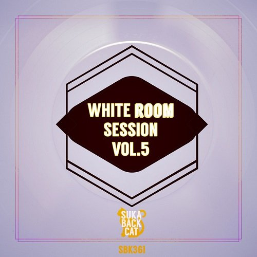 VA - White Room Session Vol.5 (2016)
