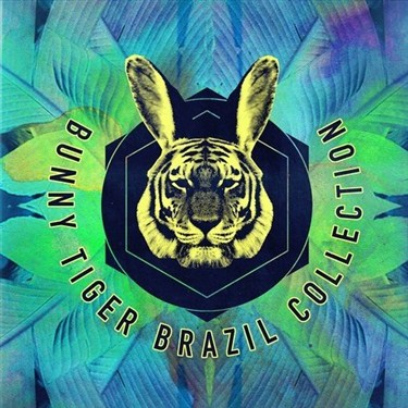VA - Bunny Tiger Brazil Collection (2016)