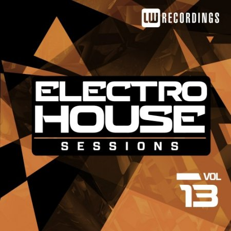 VA - Electro House Sessions Vol. 13 (2016)