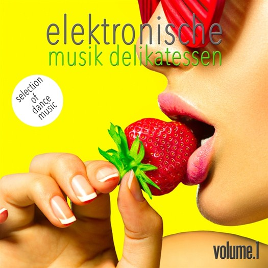 VA - Elektronische Musik Delikatessen, Vol. 1 - Selection of Dance Music (2016)