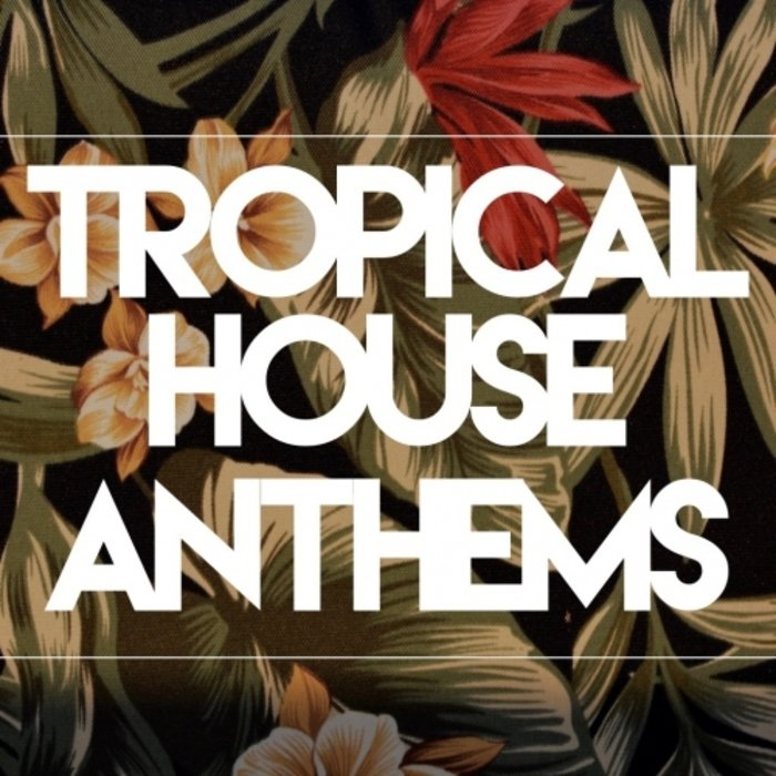VA - Tropical House Anthems (2016)