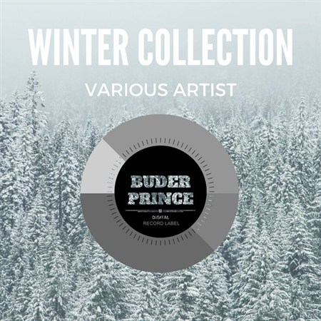 VA - Winter Collection (2016)