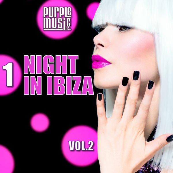 VA - 1 Night in Ibiza 2 (2016)