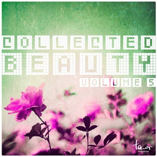 VA - Collected Beauty, Vol. 5 (2016)