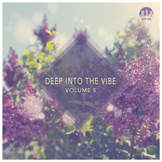 VA - Deep Into The Vibe Vol 5 (2016)