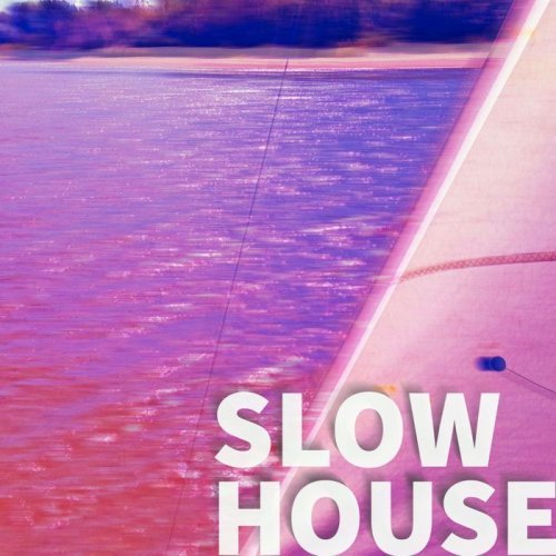 VA - Slow House (2016)