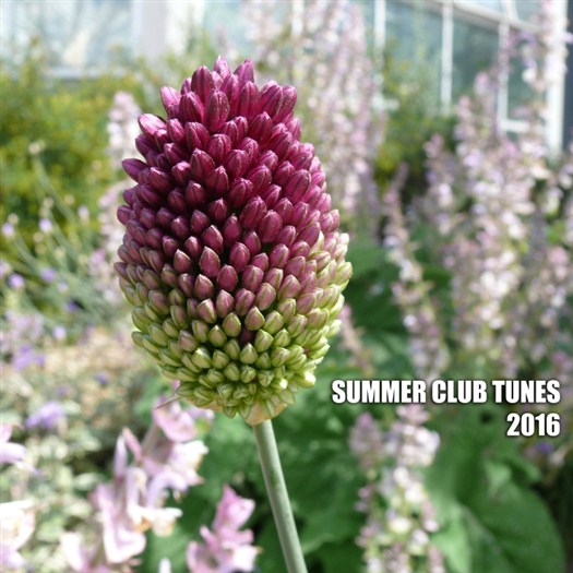 VA - Summer Club Tunes 2016