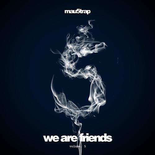 VA - We Are Friends, Vol. 5 (2016)