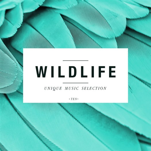 VA - Wildlife - Unique Music Selection, Vol. 10 (2016)