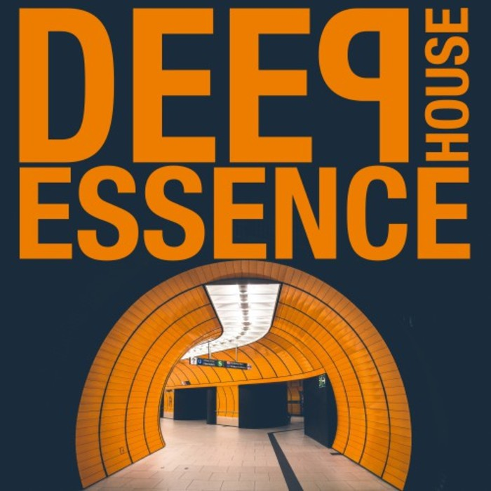 VA - Deep House Essence (2016)