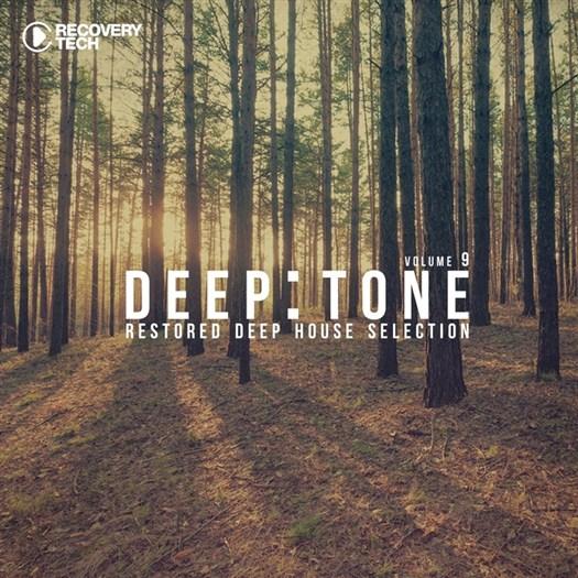 VA - DeepTone Vol 9 (2016)