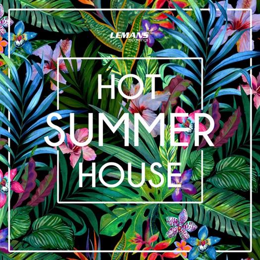 VA - Hot Summer House (2016)