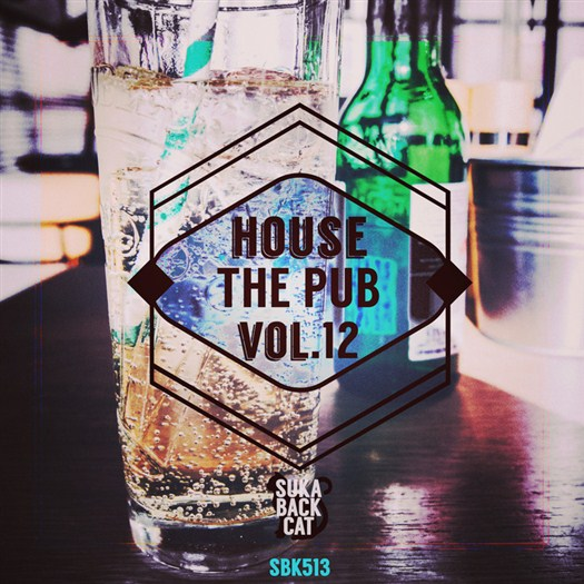 VA - House The Pub Vol 12 (2016)