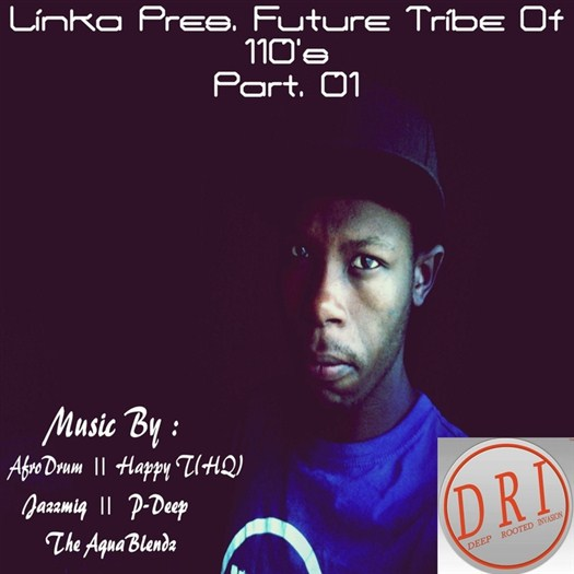 VA - Linka Presents Future Tribe Of 110 s Part 01 (2016)
