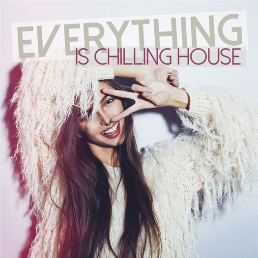 VA - Everything Is Chilling House (2016)