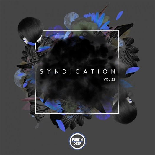 VA - Syndication Vol 22 (2016)