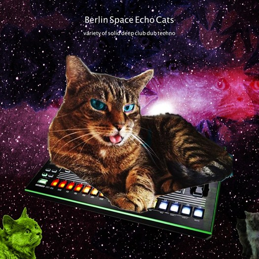 VA - Berlin Space Echo Cats (Variety Of Solid Deep Dub Techno)