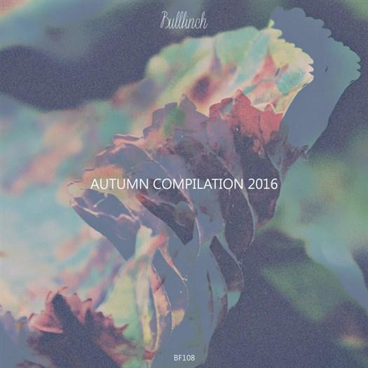VA - Bullfinch Autumn Compilation 2016