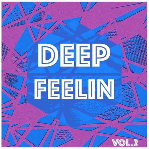 VA - Deep Feelin Vol 2 - Selection Of Deep House (2016)