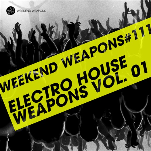 VA - Electro House Weapons Volume 1 (2016)