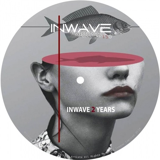 VA - Inwave 2 Years (2016)